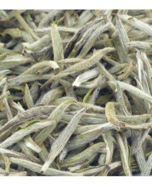 Té blanco Silver Needle calidad suprema a granel